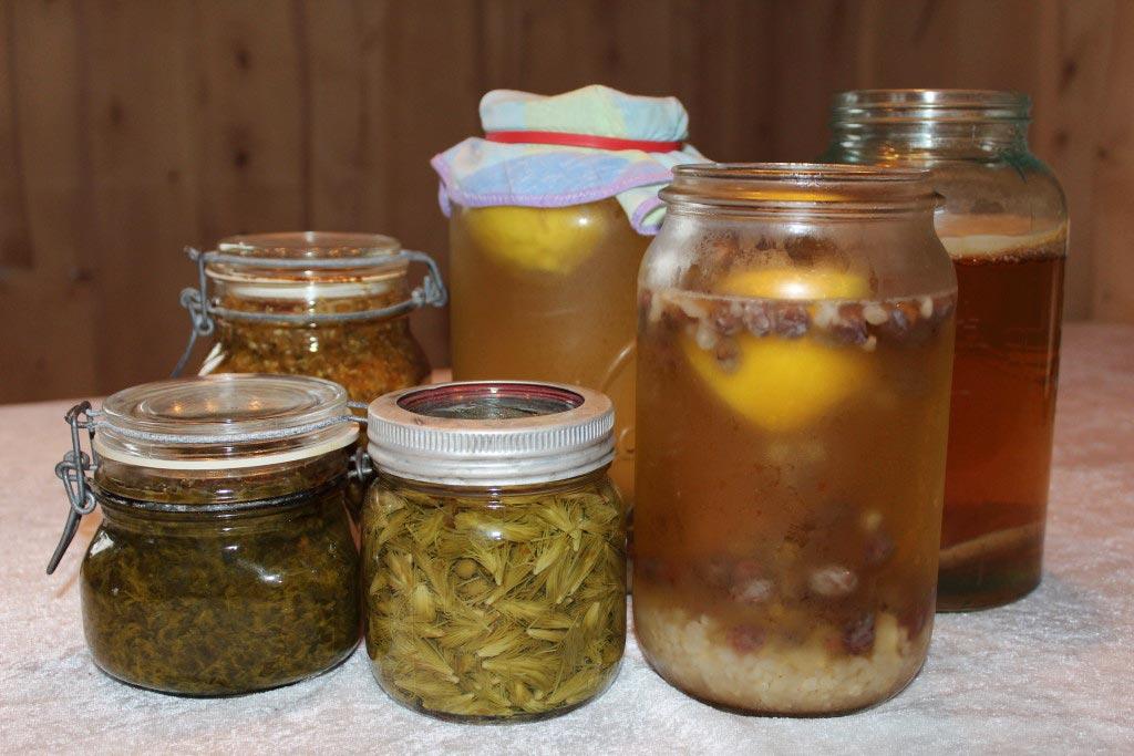 fermentert mat